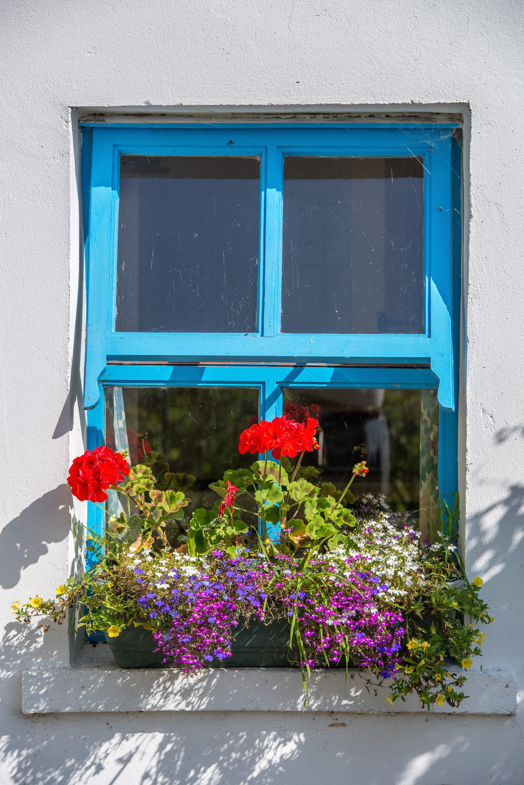Windowbox | Atlantic Villa